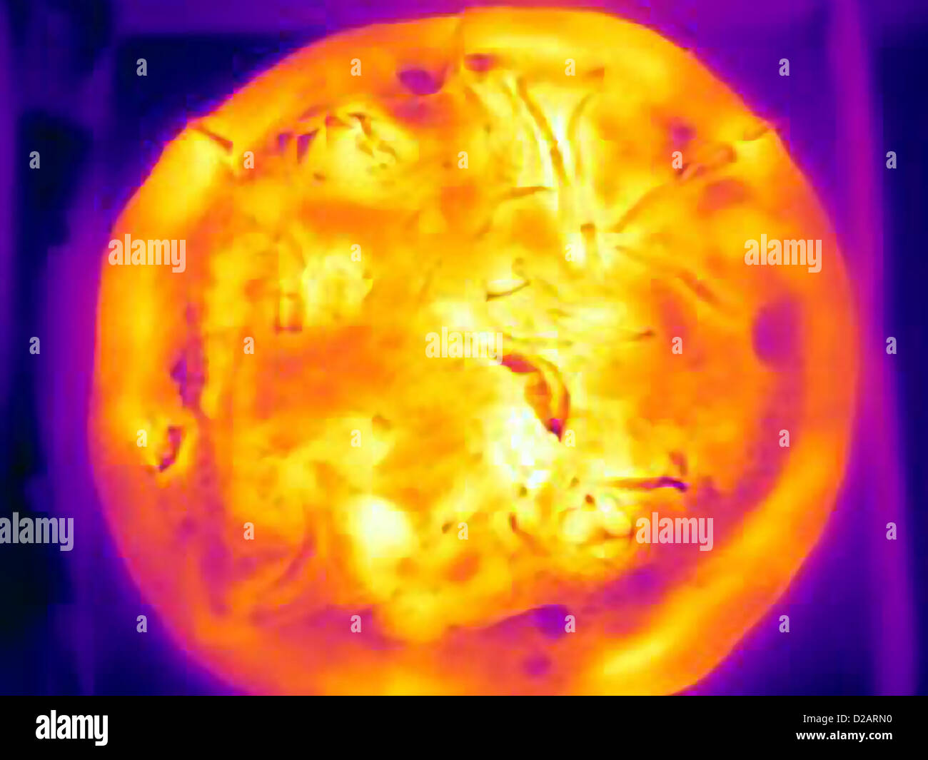 Thermal image of pizza in box - Stock Image