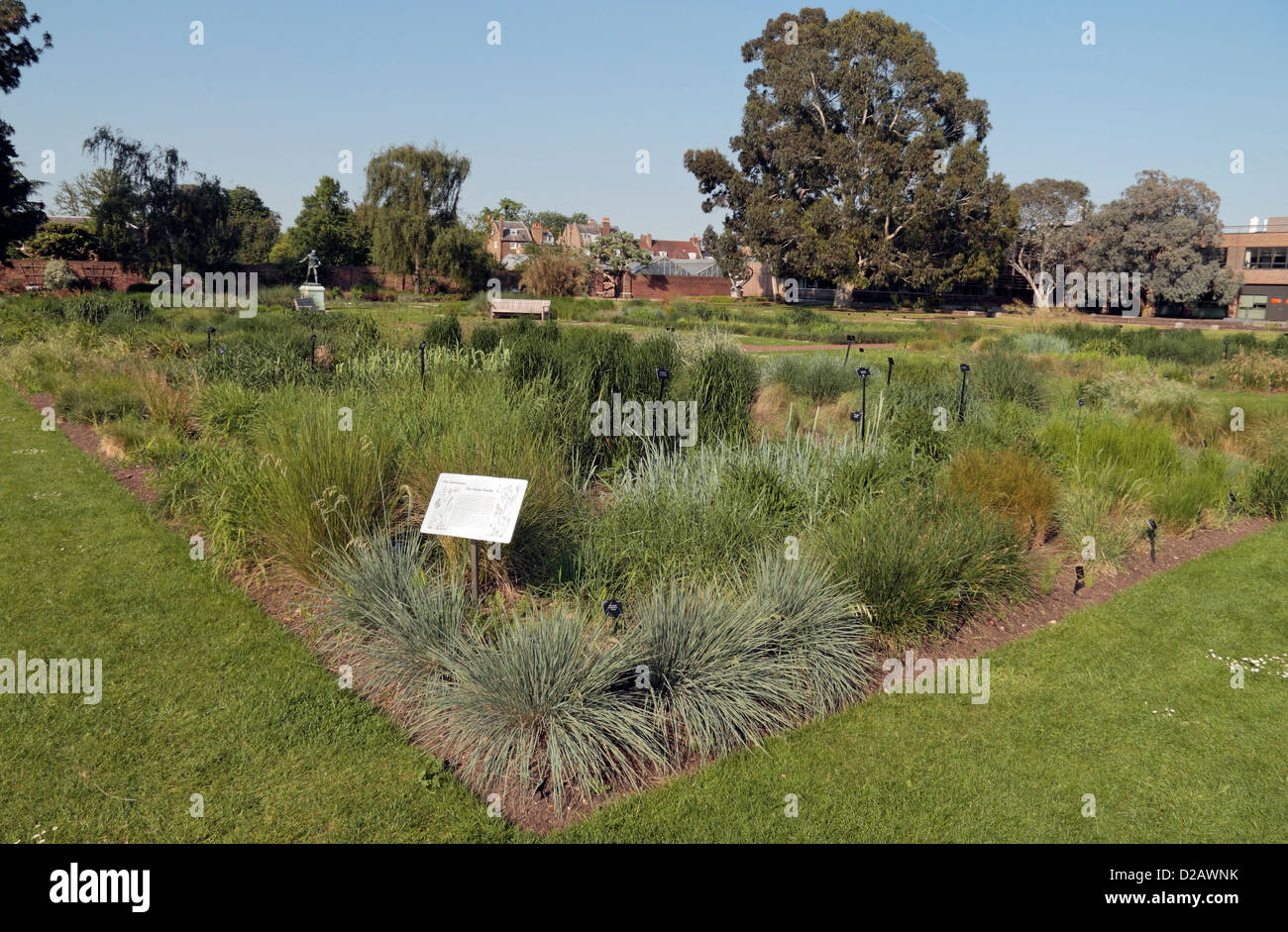The Gramineae (The Grass Family) in the Order Beds in the Royal Botanic Gardens, Kew, London, UK. - Stock Image