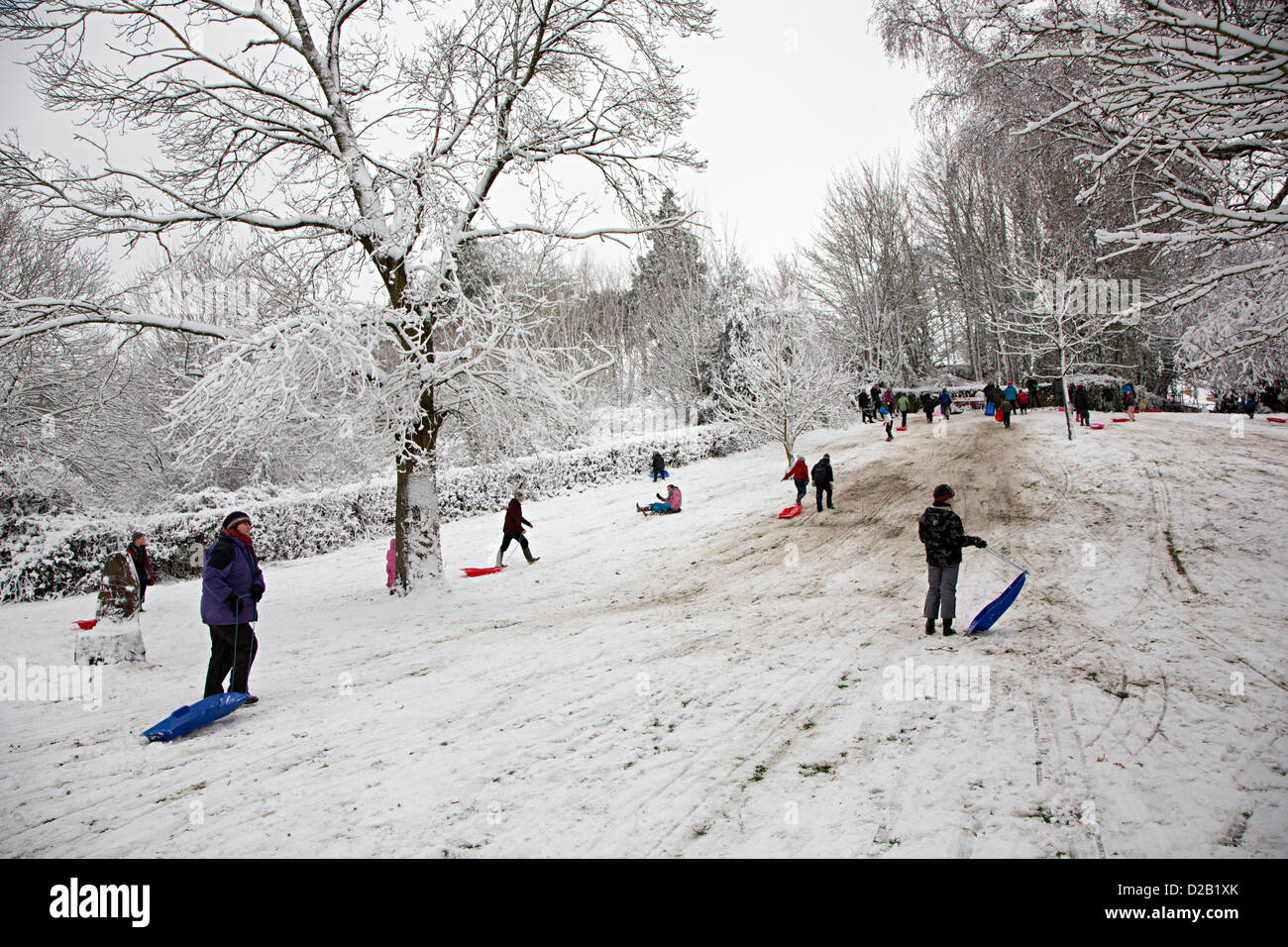 Children and adults sledging in public park Sophia Gardens, Abergavenny, Wales, UK - Stock Image