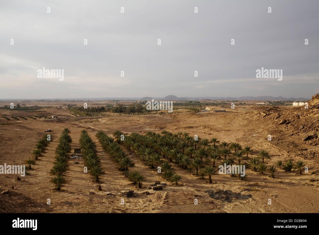 - a date orchard close to sakaka in northern saudi arabia D2B894 - LeerГЎs miles de opiniones en pГВЎginas web Con El Fin De follar en Internet, aunque pocas son reales como las mГas