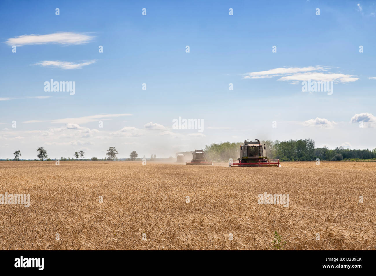 Three combined harvesters collecting from a wheat or barley field - Stock Image