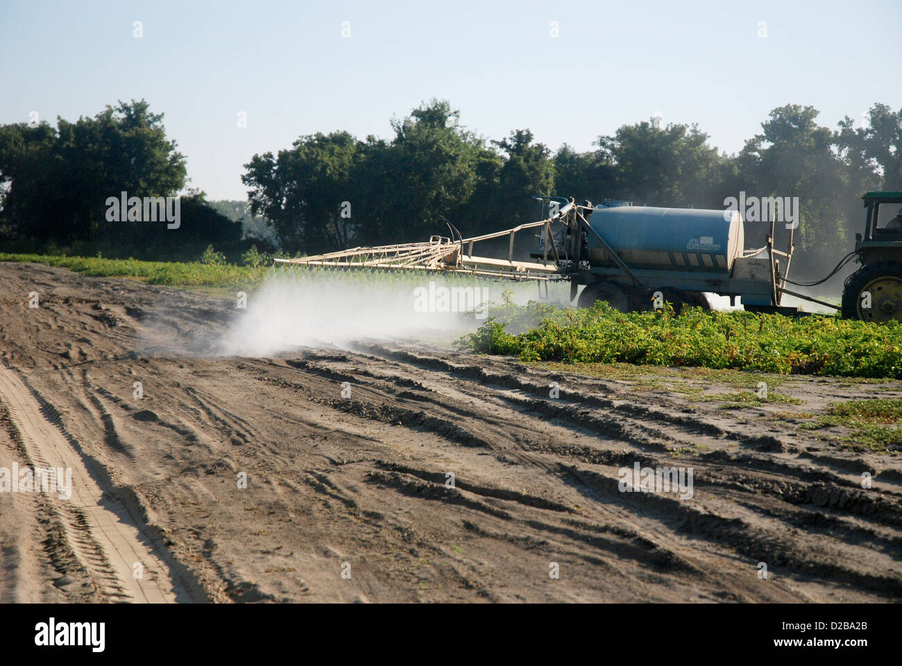 Chemical Spray On Crops - Stock Image