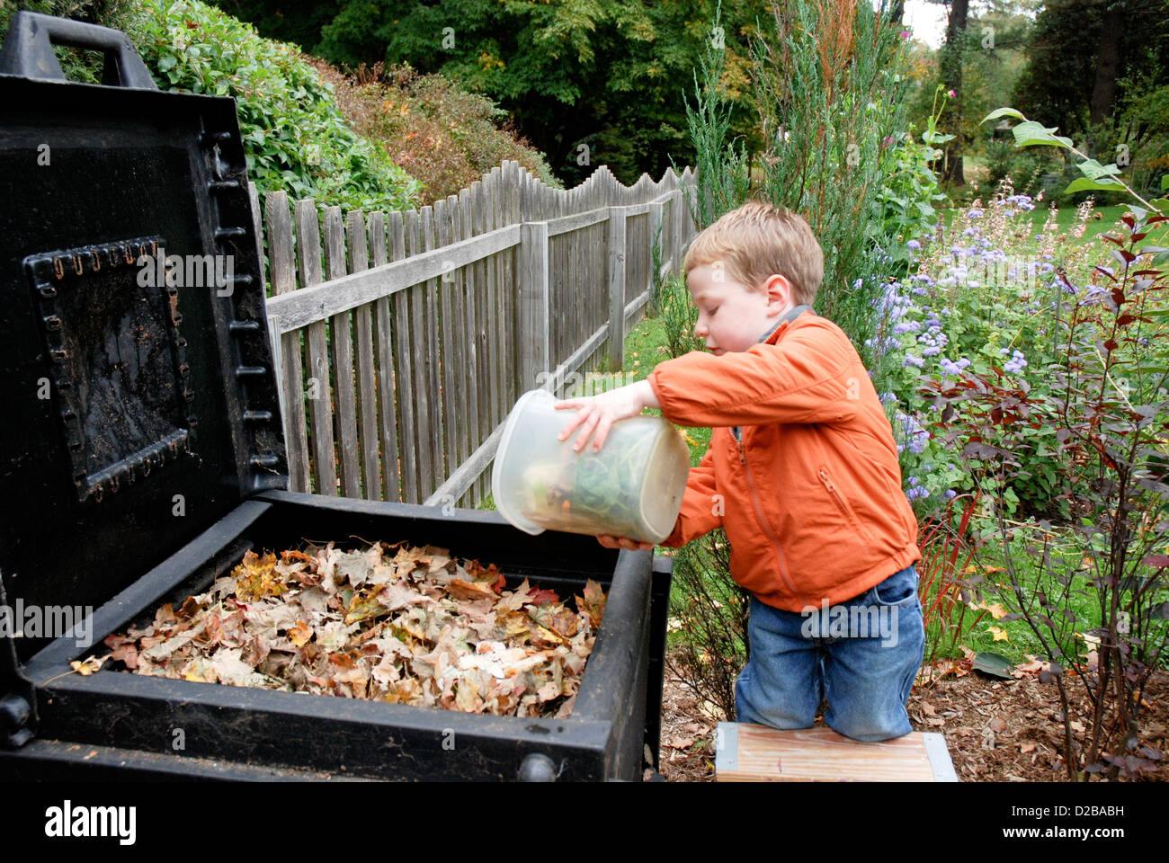 3 Year Old Boy In Massachusetts Dumping Compost - Stock Image