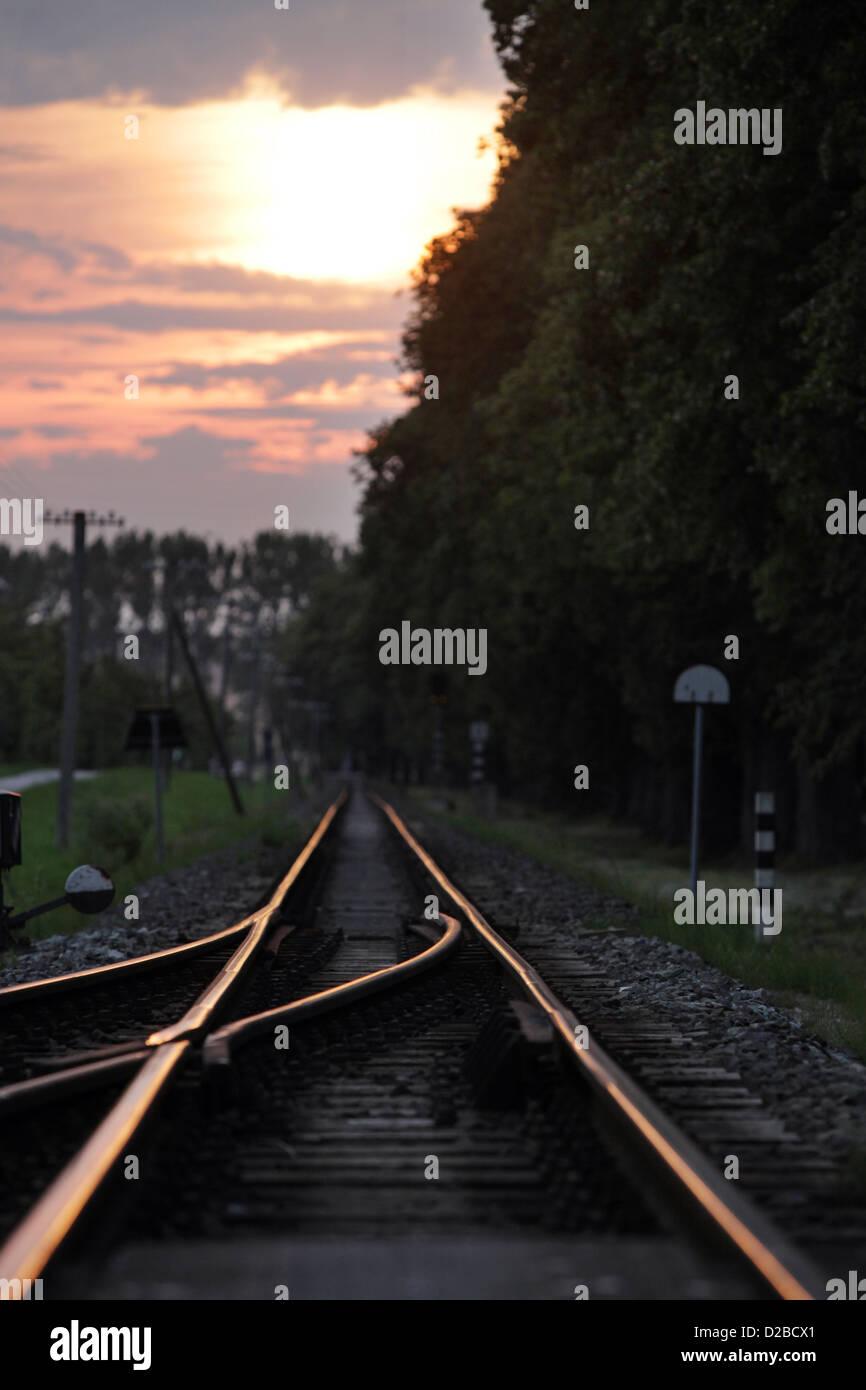 Bad Doberan, Germany, Railroad Track gleams in the sunset - Stock Image
