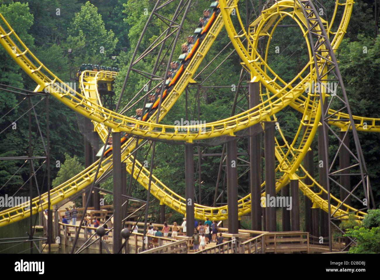 Virginia, Busch Gardens. Multi Loop Roller Coaster