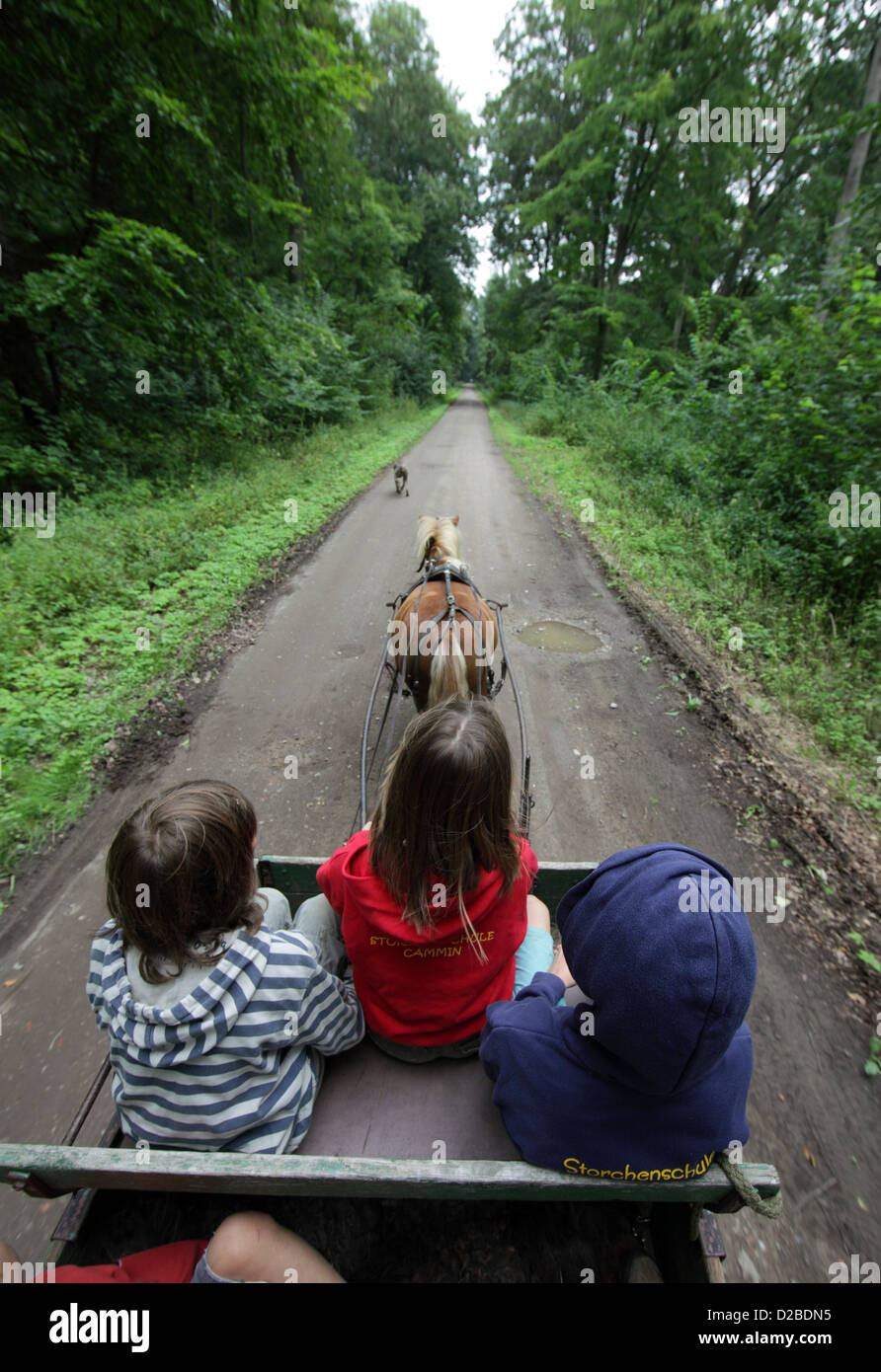 Pomerania, Germany, children get a carriage ride - Stock Image