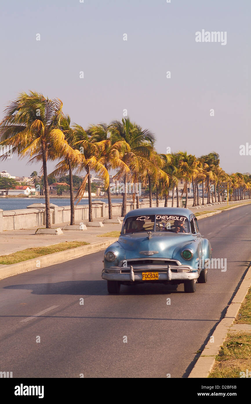 Cuba, Cien Fuergos. 50'S Chevrolet On Palm-Lined Road - Stock Image