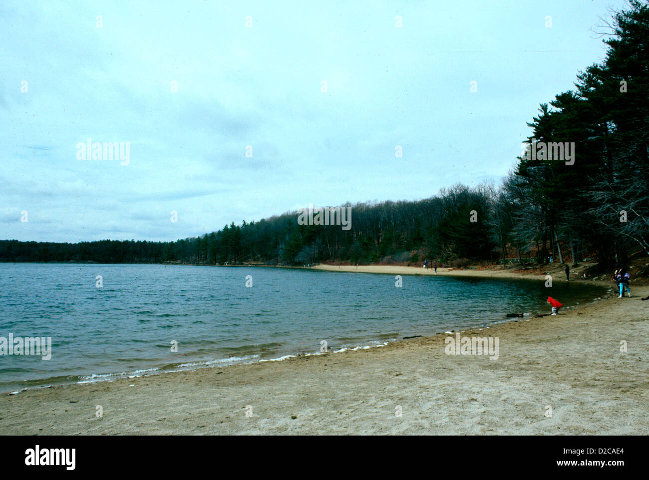 Massachusetts, Concord. Walden Pond - Stock Image