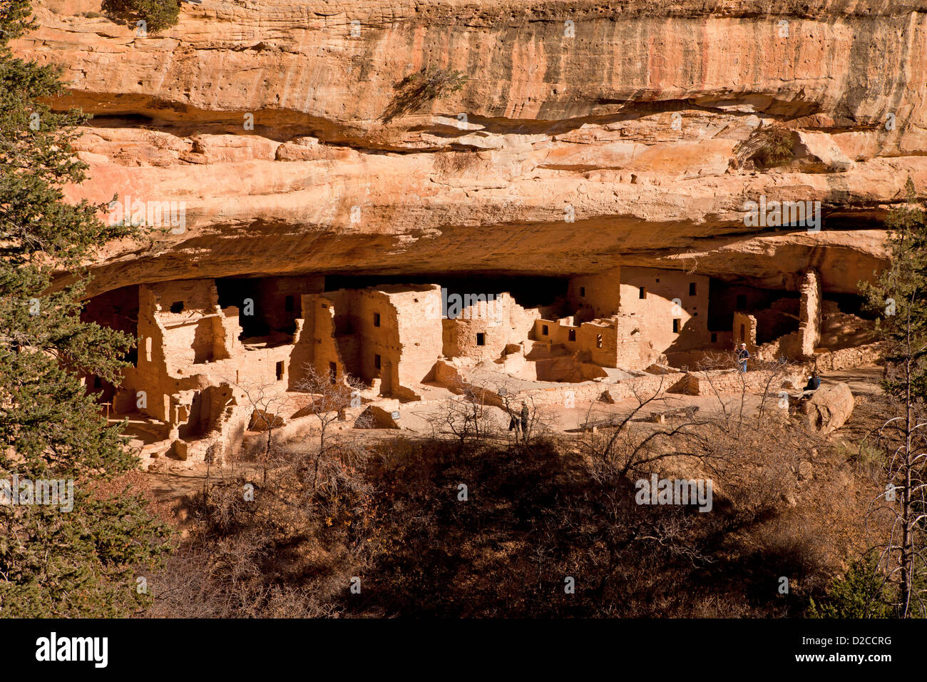 Spruce Tree House, cliff dwelling of pre-Columbian Anasazi indians and UNESCO World Heritage site, Mesa Verde National Stock Photo