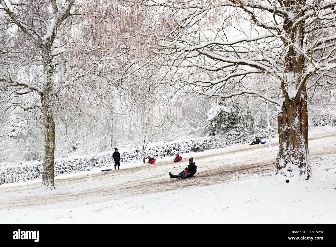 Children and adults sledging in public park Linda Vista Gardens, Abergavenny, Wales, UK - Stock Image