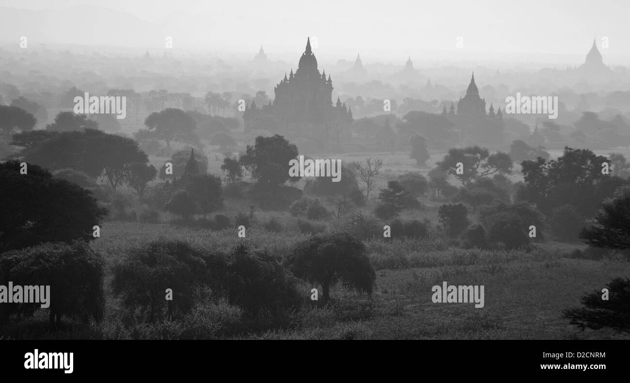 Early morning over Bagan temples Myanmar (Burma) - Stock Image