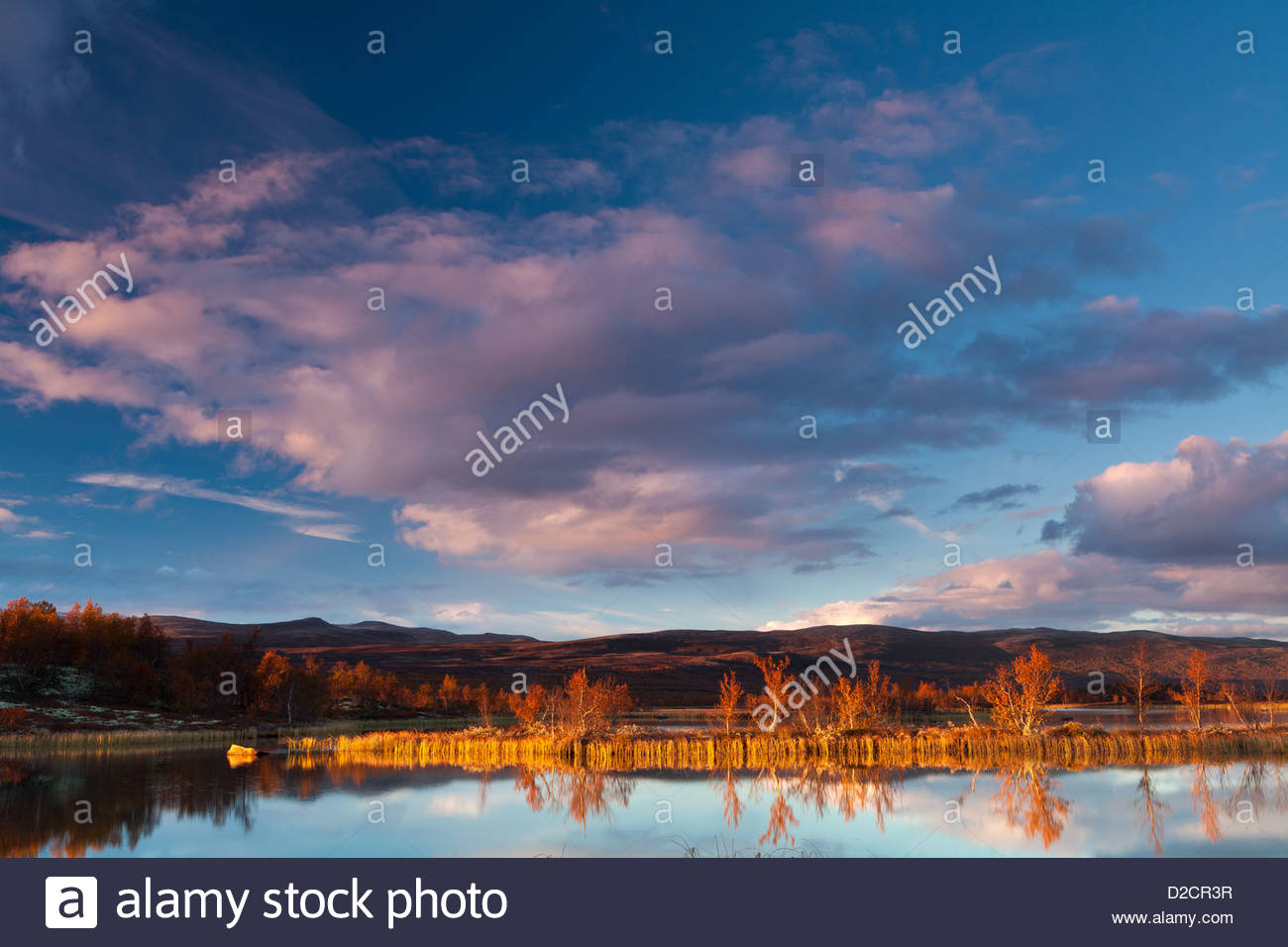Last light at Fokstumyra nature reserve, Dovre, Norway. - Stock Image