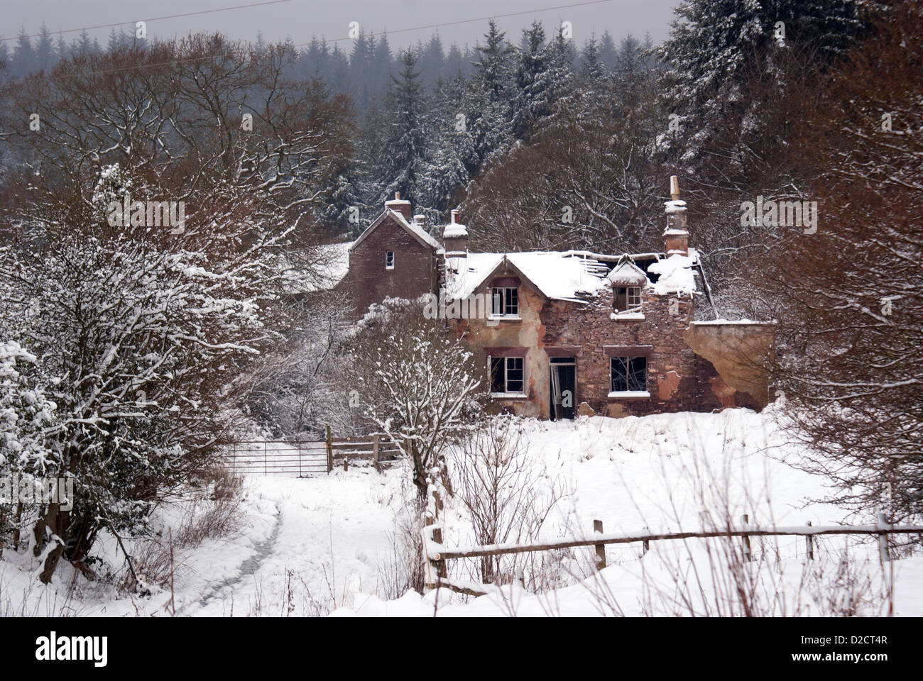 A ruined cottage in the grip of a snowy winter at Blaize Bailey in the Forest of Dean, Gloucestershire, UK - Stock Image