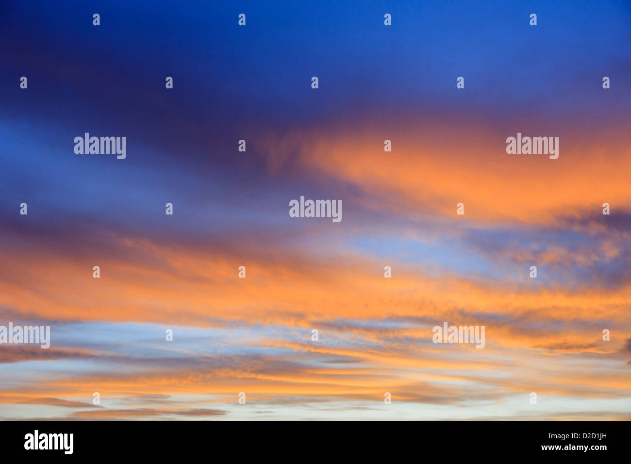 Fiery September evening skyscape with clouds lit by the orange sunset against a darkening blue sky at sundown. England - Stock Image