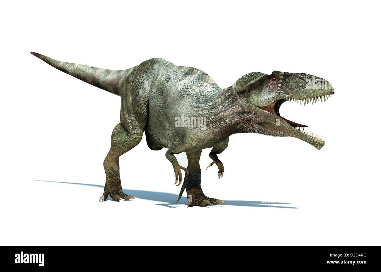 Giganotosaurus dinosaur artwork - Stock Image