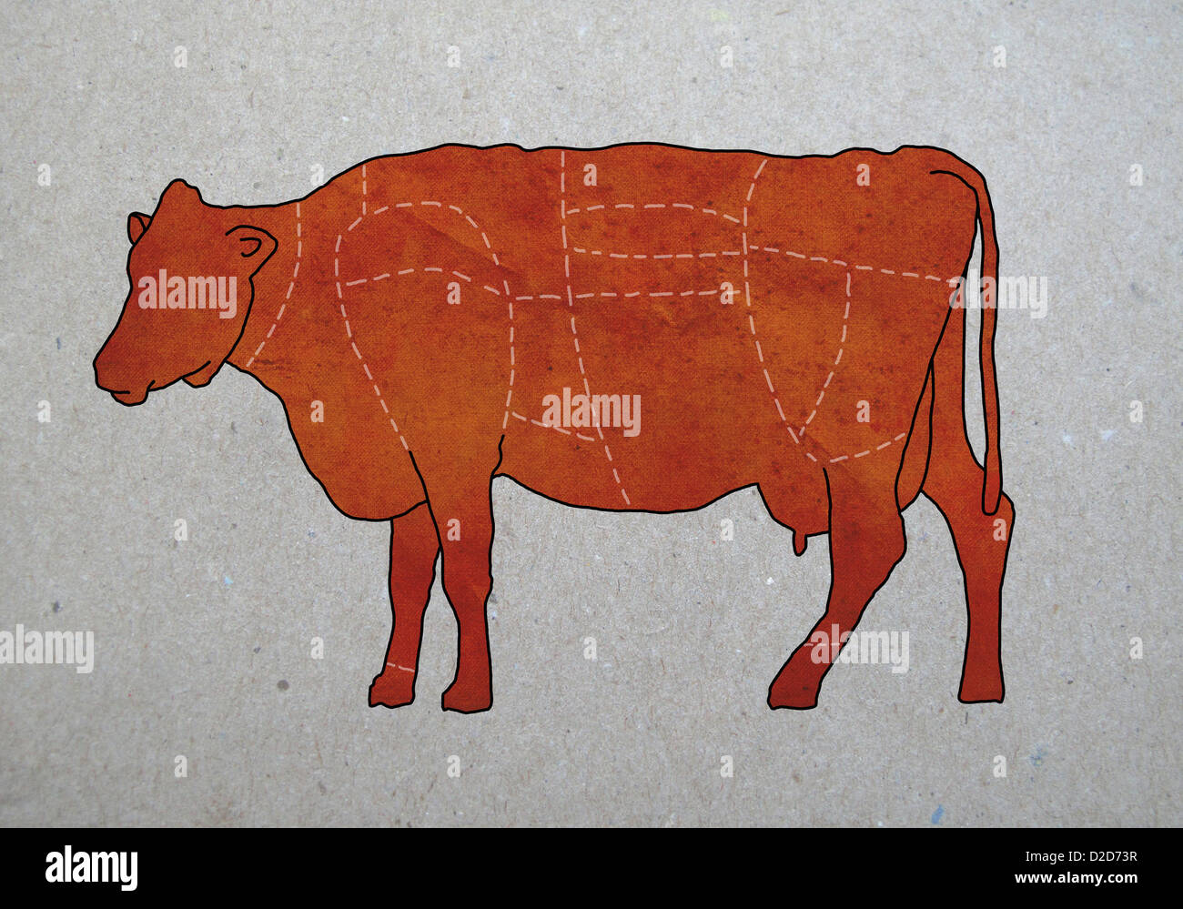 Diagram of cow stock photos diagram of cow stock images alamy a butchers diagram of a cow stock image ccuart Gallery