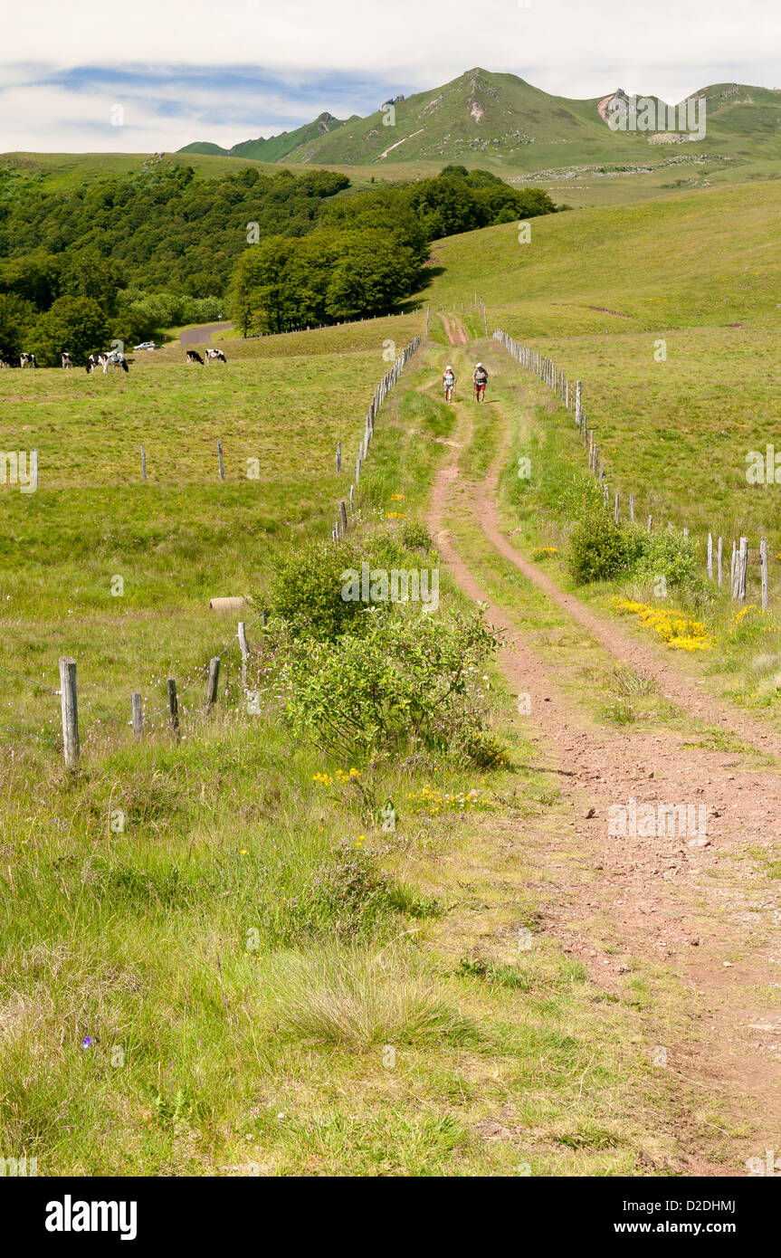 Path in Sancy  mountains, Auvergne, France. - Stock Image