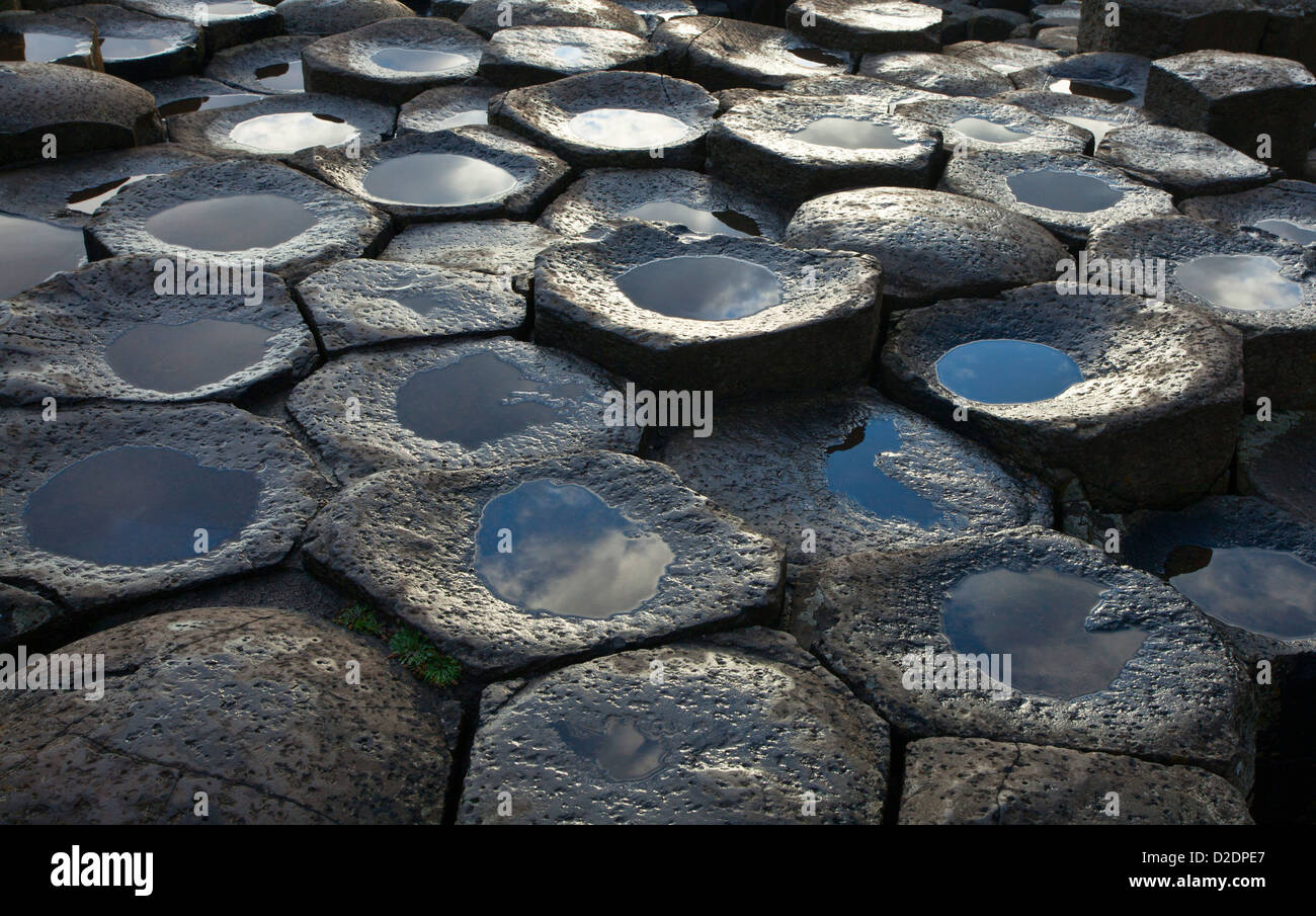 Detail of the hexagonal basalt rock formations of the Giant's Causeway, County Antrim, Northern Ireland. - Stock Image