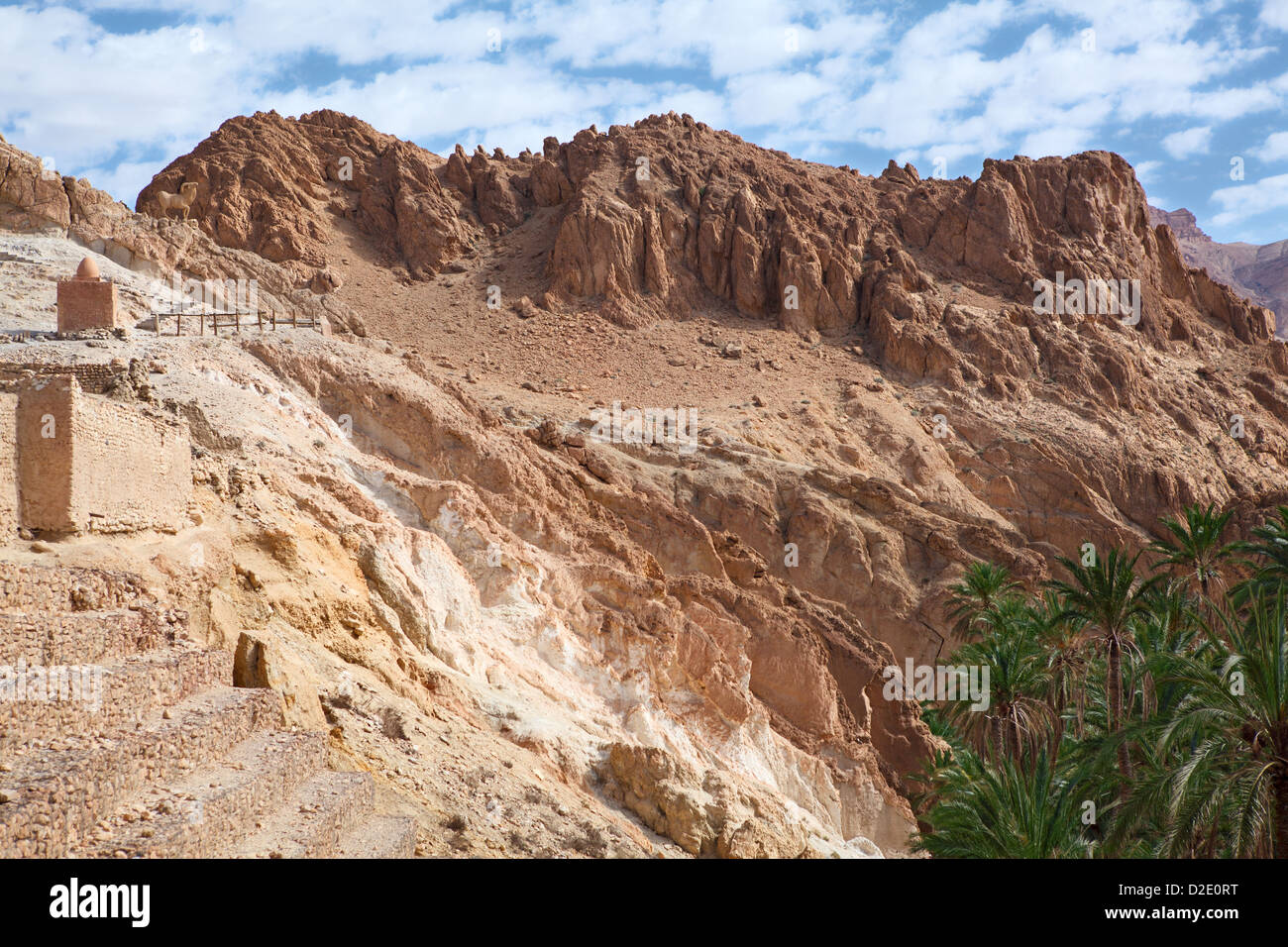 Atlas mountains terrain with oasis in Africa with palm trees. From Tunisian side - Stock Image