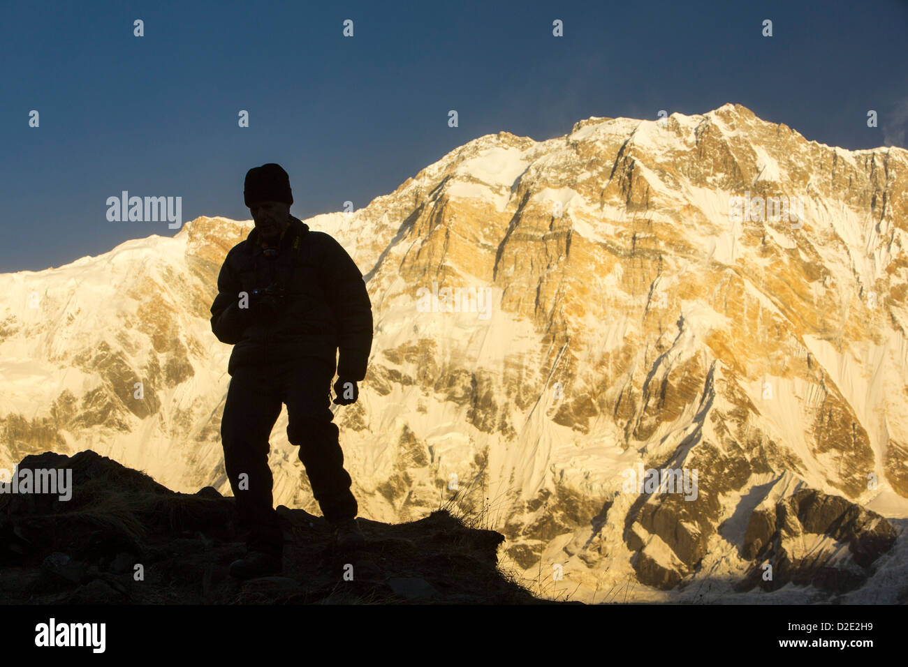 A trekker with alpenglow at sunrise on Annapurna South and Annapurna Fang, Nepelese Himalayas. - Stock Image