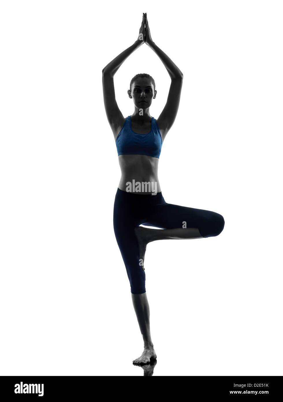 one  woman exercising yoga tree pose Vrksasana in silhouette studio isolated on white background - Stock Image