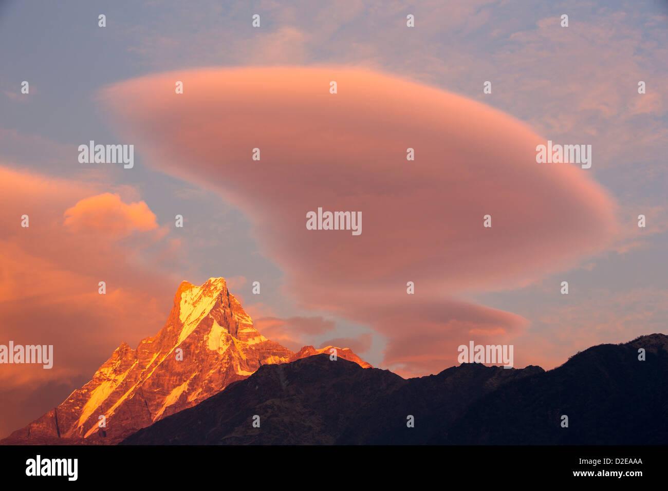 Alpenglow at sunset on Machapuchare, Annapurna Sanctuary, Nepelese Himalayas. - Stock Image
