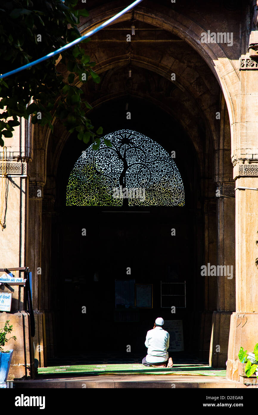 Ornate carved Jali at Sidi Sayyid Mosque, Ahmedabad, Gujarat, India - Stock Image