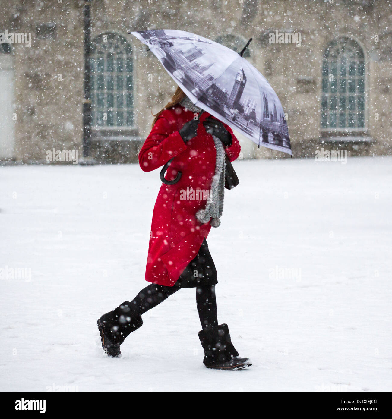 A woman walking through snow in Victoria Square, Birmingham, UK. The umbrella depicts the Houses of Parliament in - Stock Image