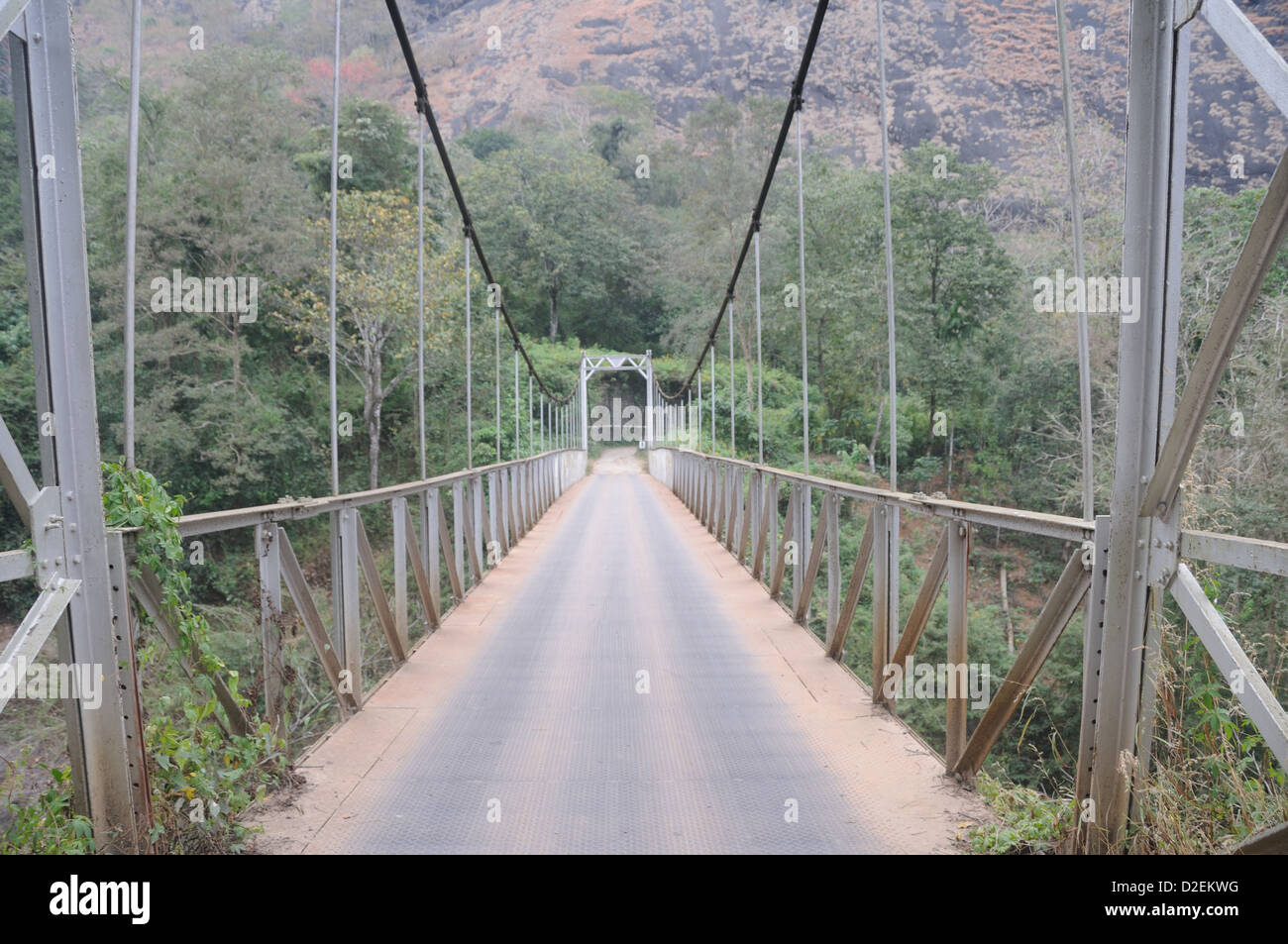 A Steel Fabricated bridge in the middle of the forest/tropical rain forest at Munnar. - Stock Image