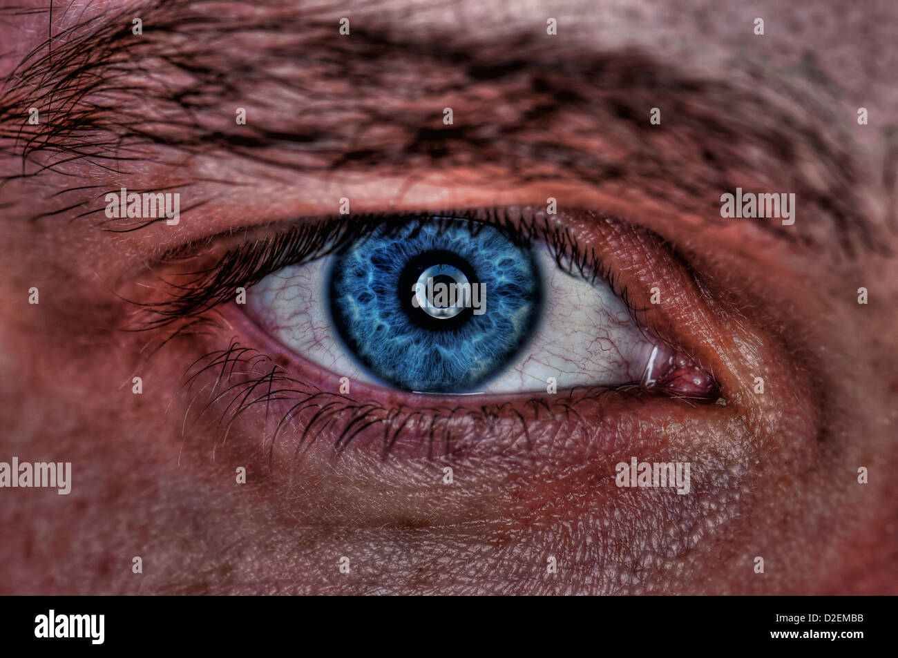 Extreme closeup of a human eye - blue - Stock Image
