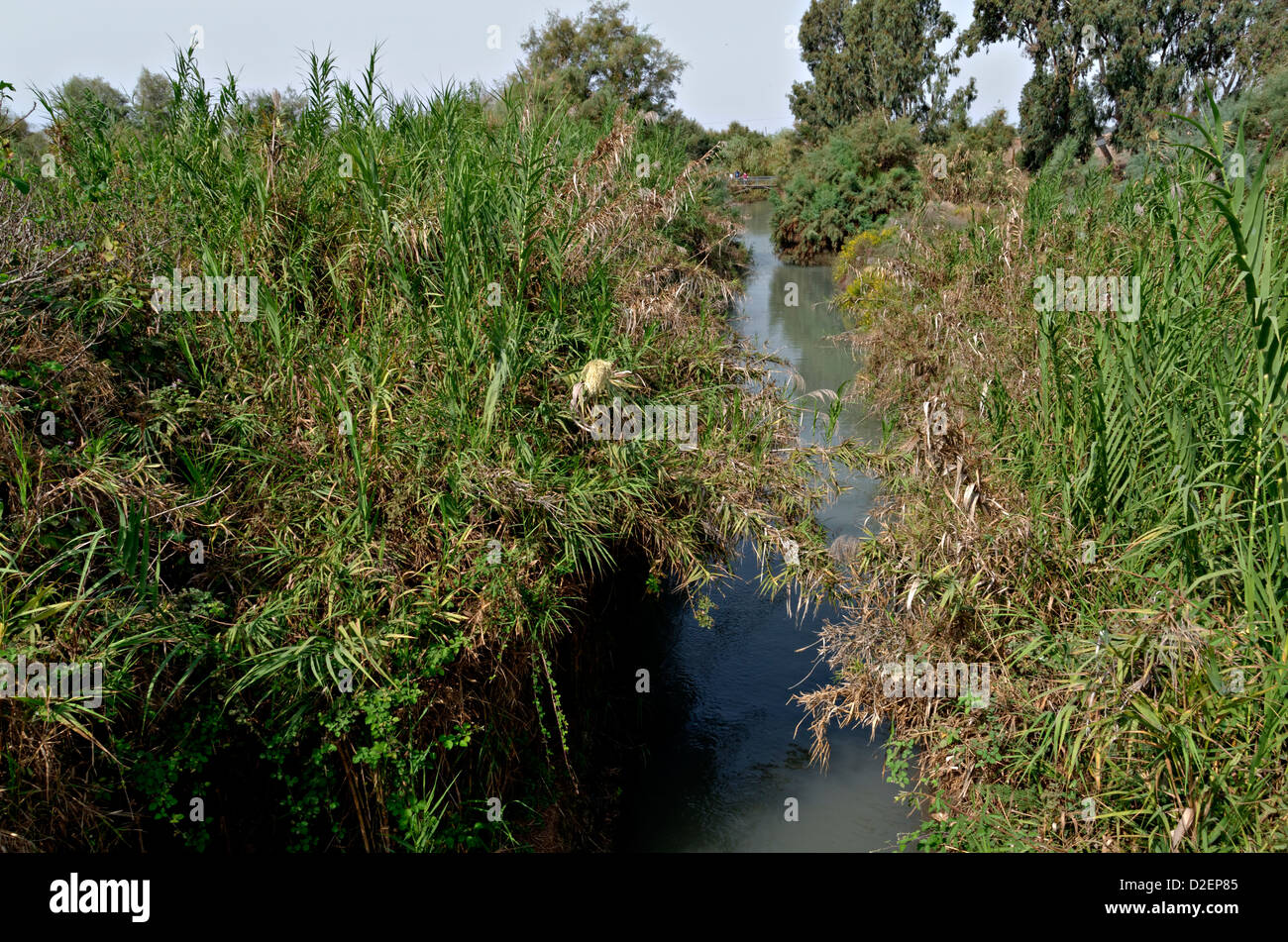 Israel, Northern District Ein Afek Nature Reserve on the Naaman River - Stock Image