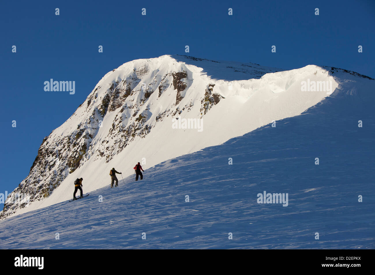 Three backcountry skiers hiking up a mountain in pink sunrise light. - Stock Image
