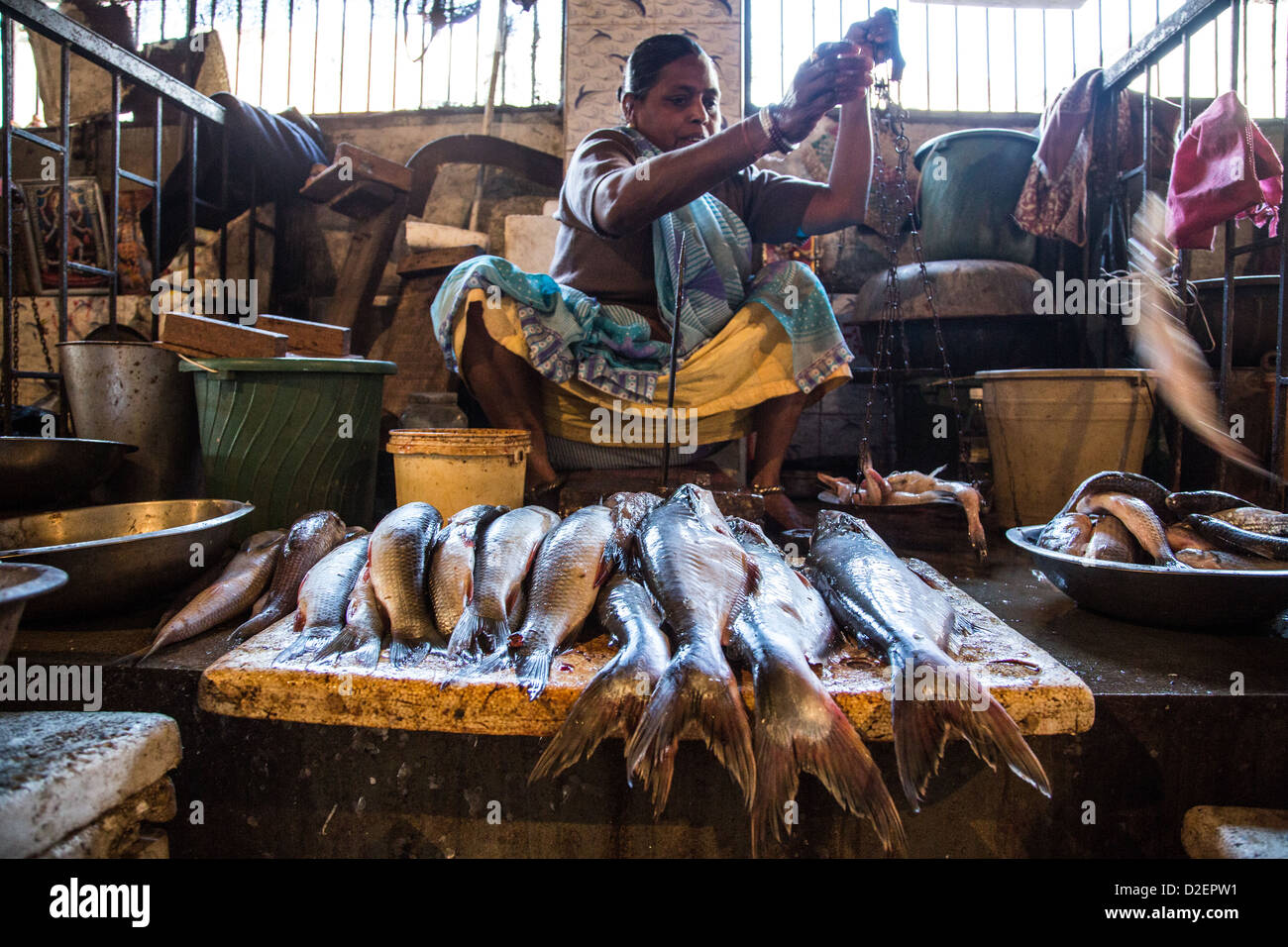 Fish market in Ahmedabad, Gujarat, India - Stock Image