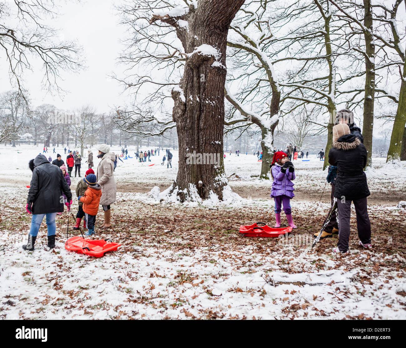 Families with pets and sleds enjoying the snow in snowy Richmond Park in cold winter weather,Richmond upon Thames, - Stock Image