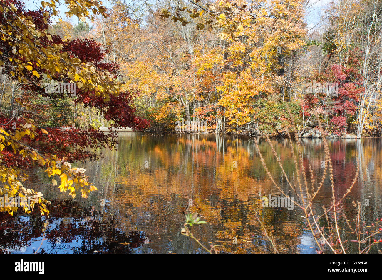 Reflections of colorful foliage on lake water, autumn - Stock Image
