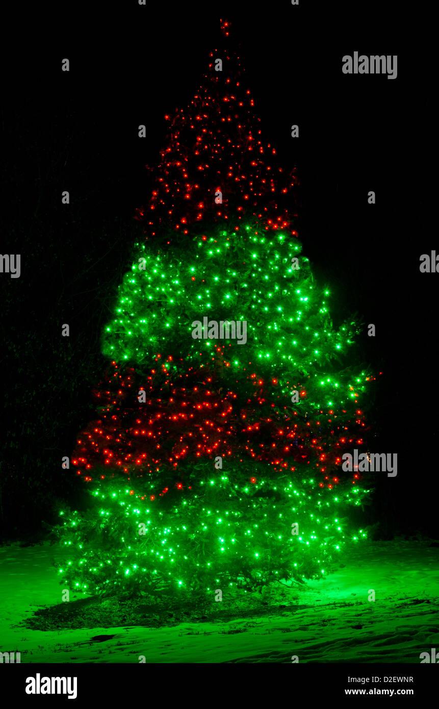 Christmas Tree Lights Snow Forest Stock Photos & Christmas Tree ...