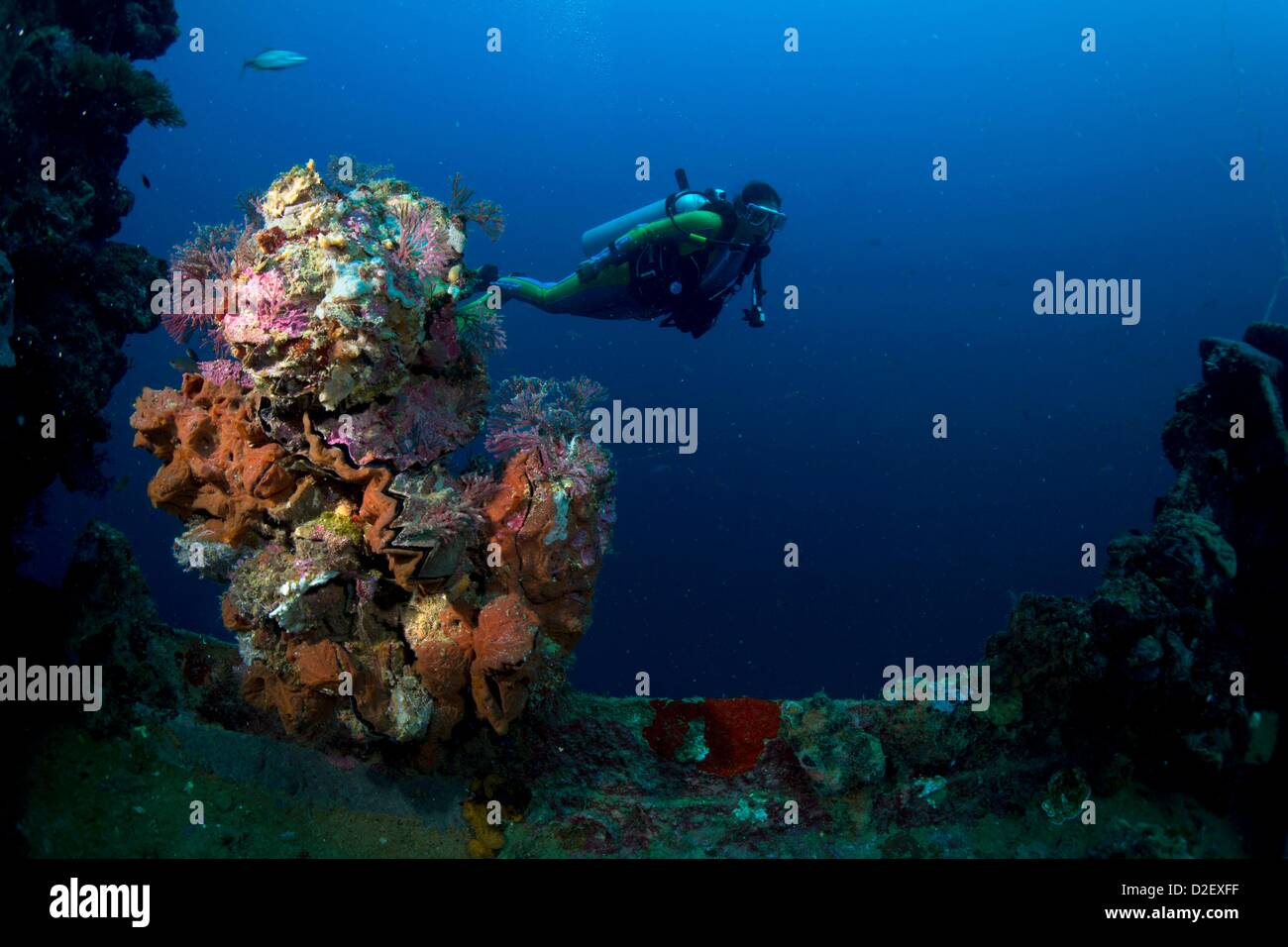 Divers on the Wreck Kyokuzan Maru Japanese freighter, sunk in 1944, Malawig ,Coron, Palawan, Philippines, Asia Stock Photo
