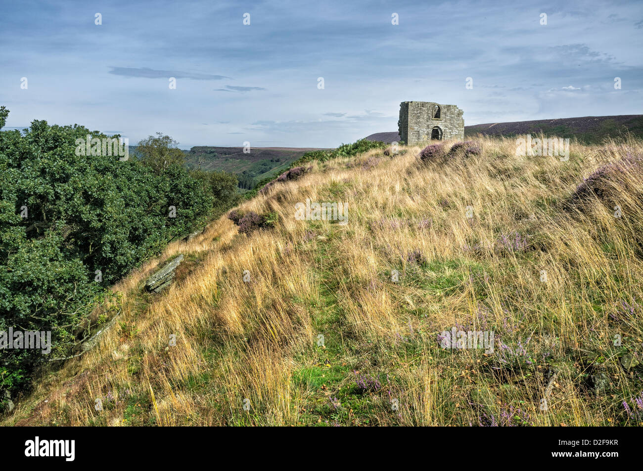 Ruins of Skelton Tower perched on a hilltop in the midst of the North York Moors near Levisham, Yorkshire, UK. - Stock Image