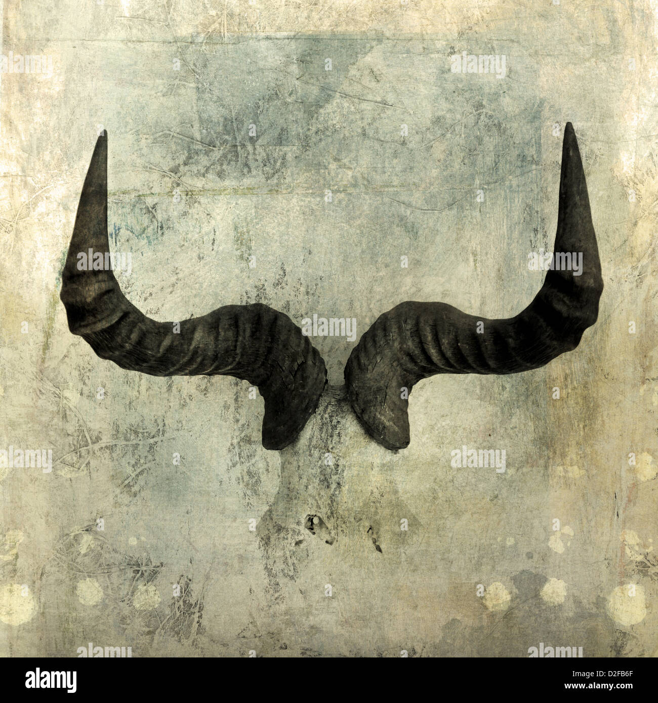 Wildebeest Horns. Photo based illustration. - Stock Image