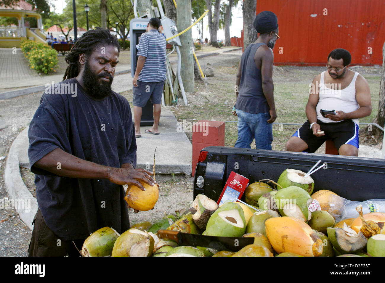 Selling Coconut Drinks from the back of his Truck, Frederiksted, St. Croix, US Virgin Islands, Caribbean - Stock Image
