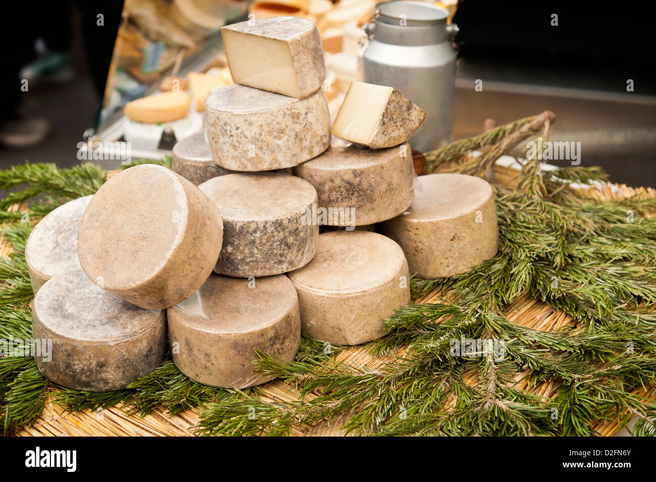Display of Cheeses on a market stall UK - Stock Image