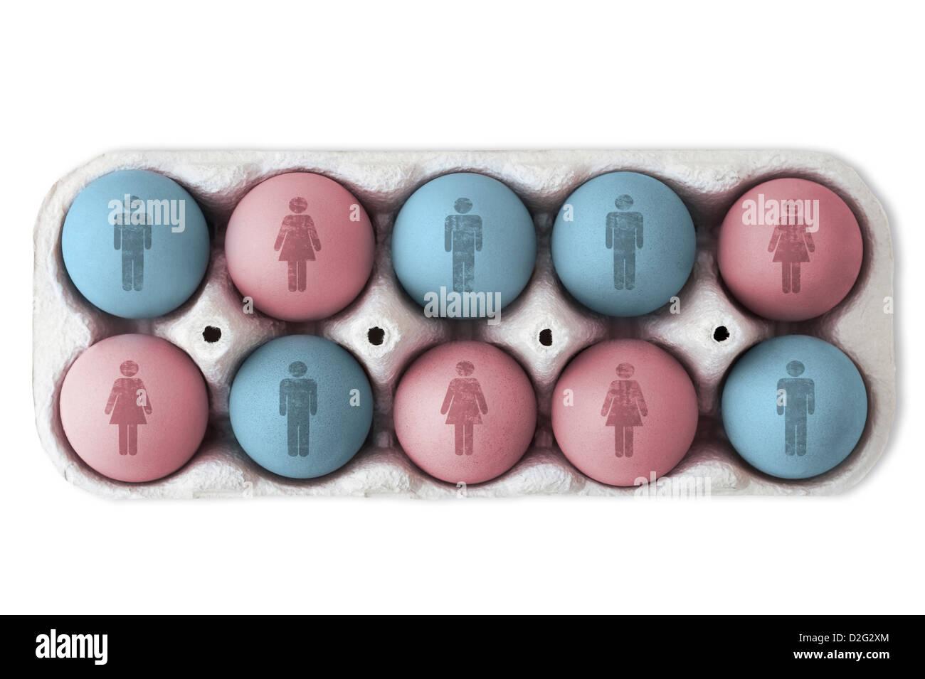 IVF / gender concept / designer baby concept - Stock Image