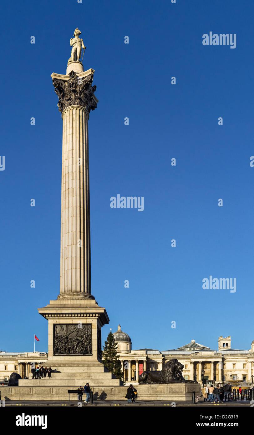 Nelson's Column in Trafalgar Square, London, UK - Stock Image