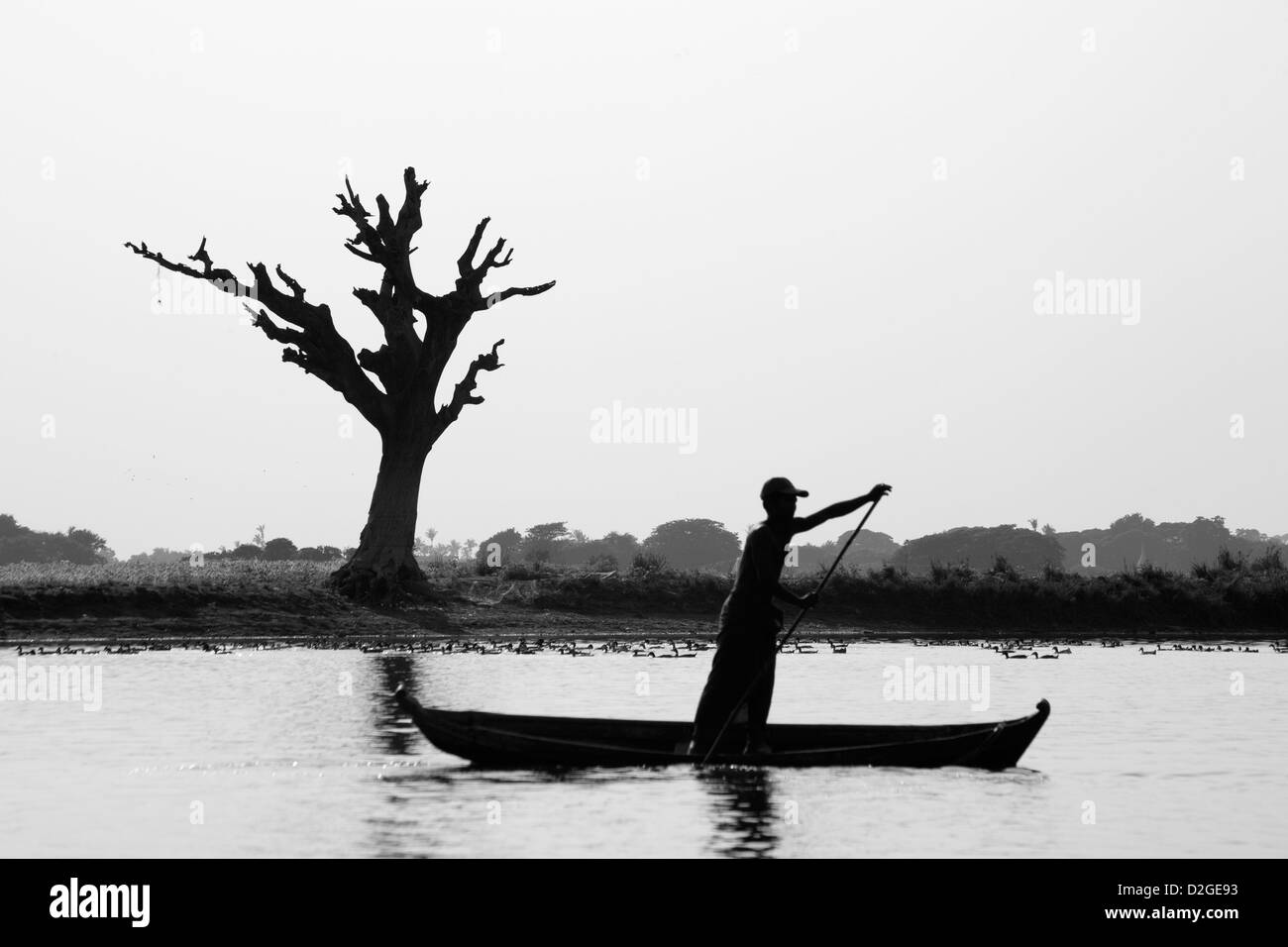 Fisherman on Irrawaddy River Myanmar - Stock Image