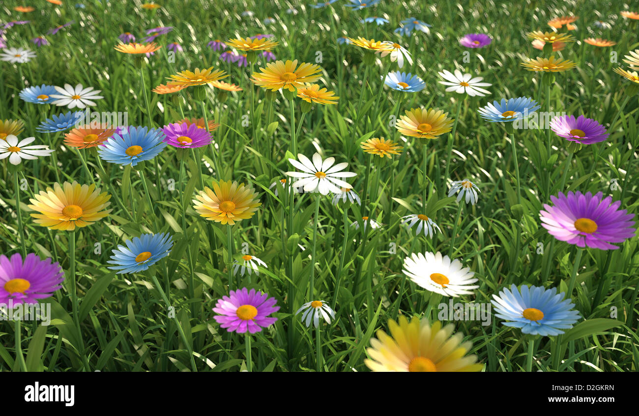 Plenty of daisy flowers bird eye stock photos plenty of daisy close up view of a grass filed plenty of multicolored flowers stock image izmirmasajfo