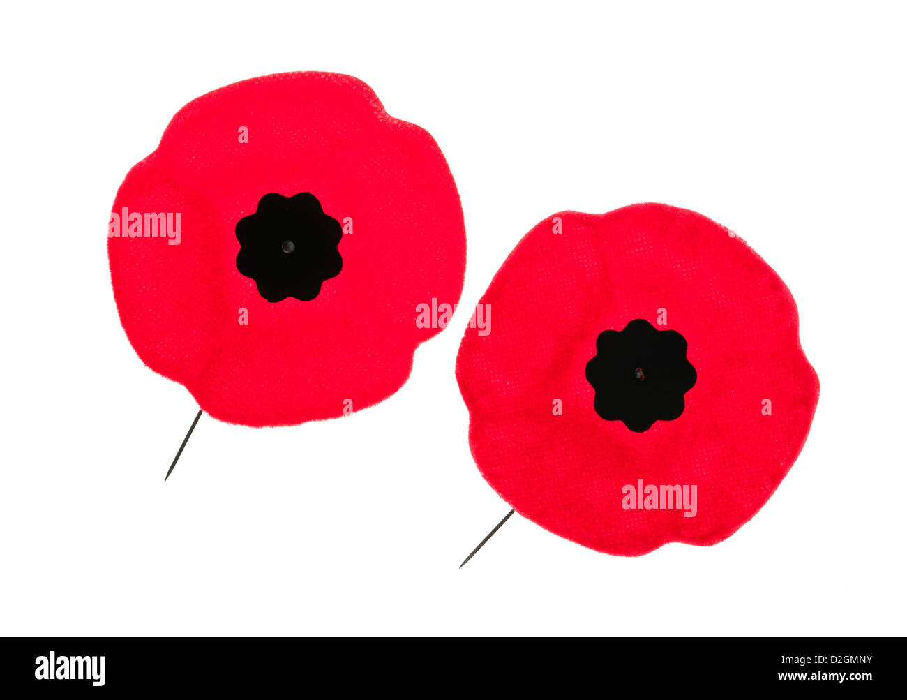 Two red poppy lapel pins for Remembrance Day - Stock Image