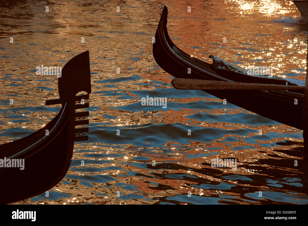 dc51b428d53 The bow and stern of two gondolas in Venice at sunset with golden light  reflecting of