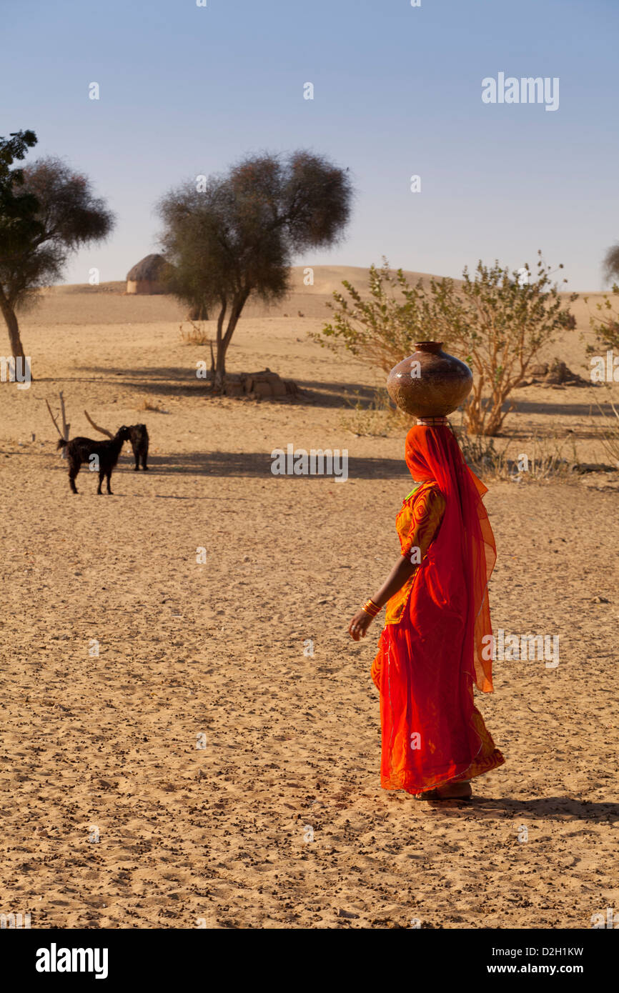 India, Rajasthan, Thar Desert, Indian woman carrying traditional water pot - Stock Image