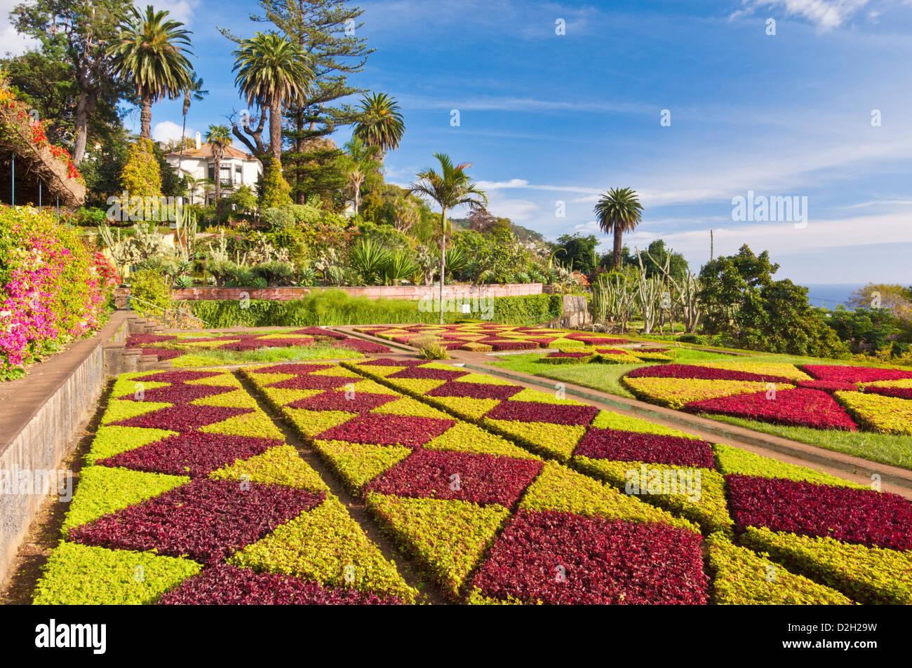Formal garden display in the Botanical gardens Jardim Botanico Madeira Portugal EU Europe - Stock Image