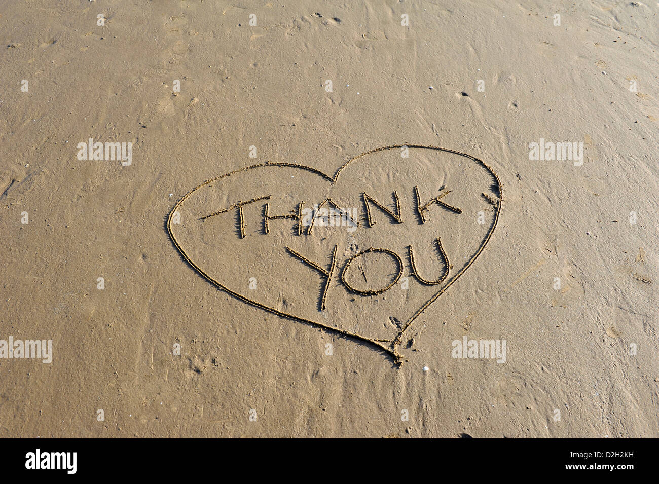 Word Thank You written in sand - Stock Image